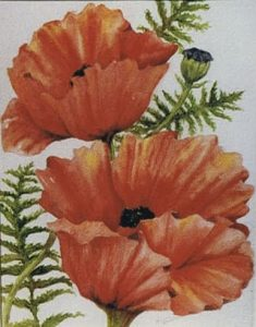Poppies painting by Nancy Briechle
